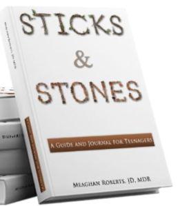 bookSticksStones